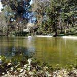 Parque quinta los molinos de Madrid